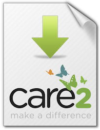 Care2-Case-Study---c2-download-sheet
