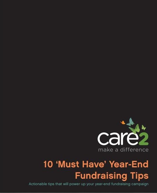 care2_cover